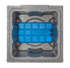Cooling Cubes - GOOFY FOOT